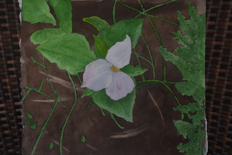 "The Trillium, w/c, 11""x10"" (framed: 17""x16""), $$280.0000"