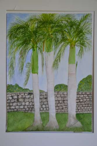 "Dominican Palm, w/c, 10x14"" (framed: 20x23""), $$310.0000"